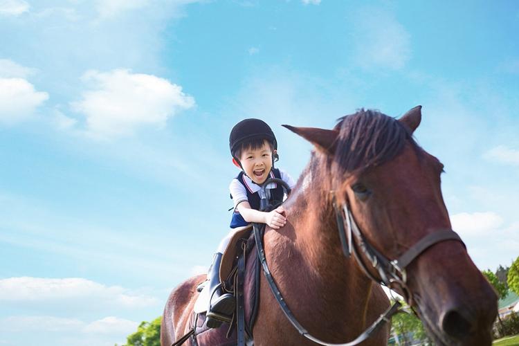 【自驾· 亲子营地】10.23/24小小骑士+英语沙龙|| LEMONTREE(1日)